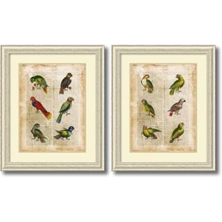 Vision Studio 'Antiquarian Parrots- set of 2' Framed Art Print 28 x 34-inch Each