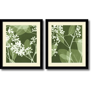 Steven N. Meyers 'Eucalyptus Buds- set of 2' Framed Art Print 27 x 32-inch Each