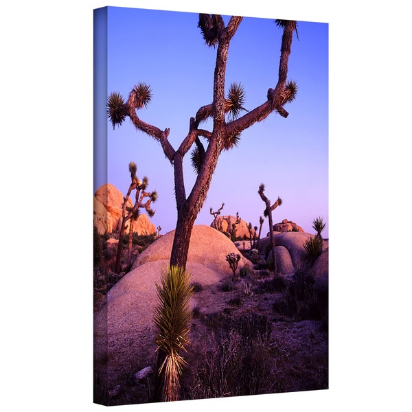 Dean Uhlinger 'Joshua Tree Twilight' Gallery-wrapped Canvas