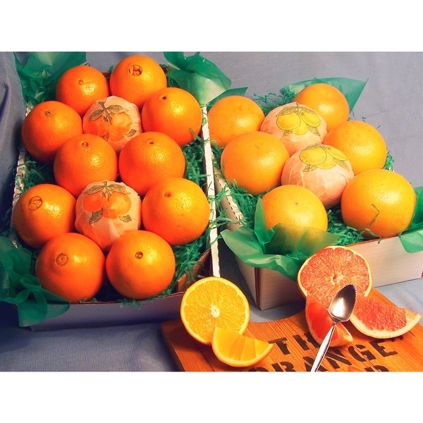 Fresh Navel Oranges and Ruby Red Grapefruit 9-pound Fruit Box