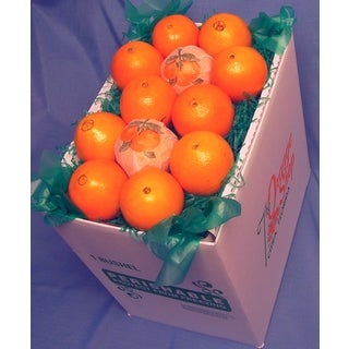 Fresh Florida Navel Oranges 18-pound Fresh Fruit Box