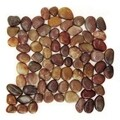 Polished Red Pebble Mesh Tile (Pack of 11)