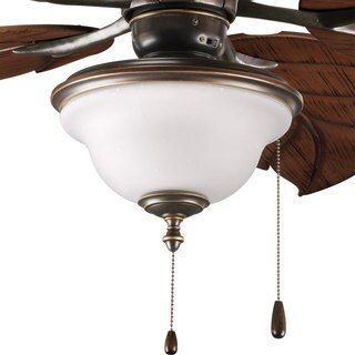 Progress Lighting Ashmore Collection Antique Bronze 2-light Ceiling Fan Light