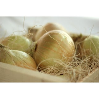 Walla Walla Sweet Onions (14 Pounds)