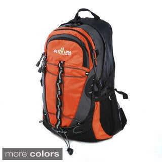 Olympia Bruin 19-inch Laptop Backpack