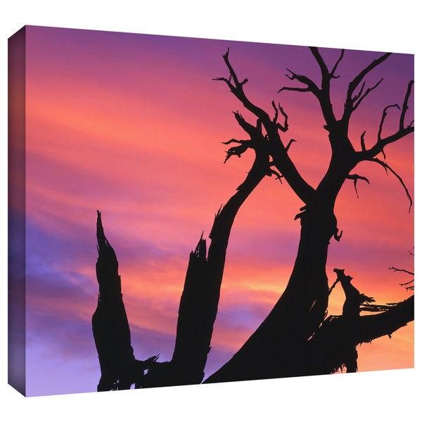 Dean Uhlinger 'Desert Magic Hour' Gallery-wrapped Canvas