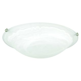 Flush Mount 2-light Ceiling Fixture
