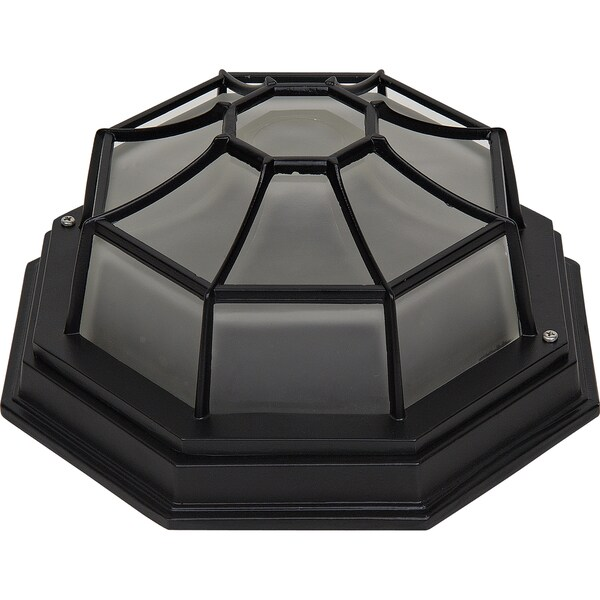 Frosted Glass Single Light Outdoor Flush Mount