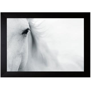 Shana Rae 'Caballo Blanco II' Framed Art