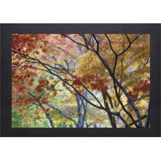 Don Paulson 'Lithia Park' Framed Artwork