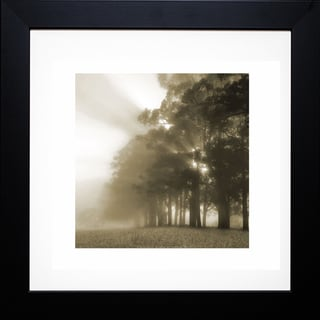 Steven Mitchell 'Misty Forest' Framed Artwork
