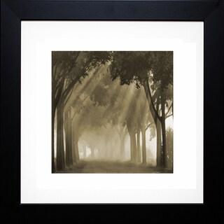 Steven Mitchell 'Misty Grove' Framed Artwork
