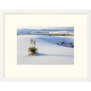Konrad Wothe 'Soaptree Yucca in gypsum sand, White Sands National Monument, New Mexico' Framed Art Print
