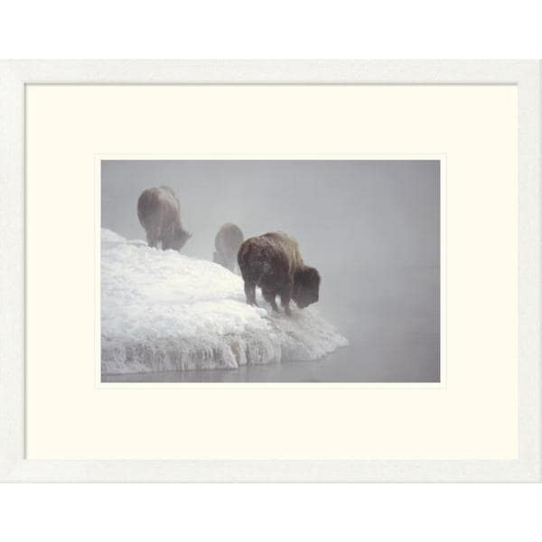 Konrad Wothe 'American Bison along snowy riverbank, Yellowstone NP, Wyoming' Framed Art Print