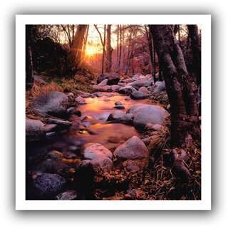 Dean Uhlinger 'Homeland Wilderness' Unwrapped Canvas