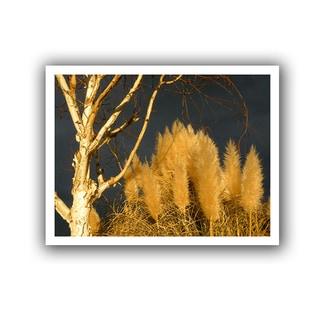 Dean Uhlinger 'Autumn Storm Light' Unwrapped Canvas