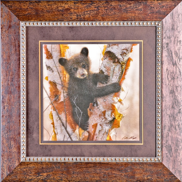 Curious Cub I by Collin Bogle