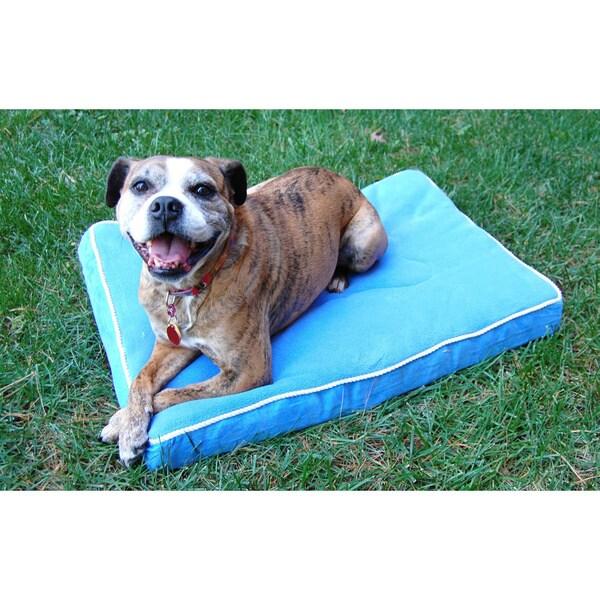Betty Bone Small Orthopedic Pet Bed