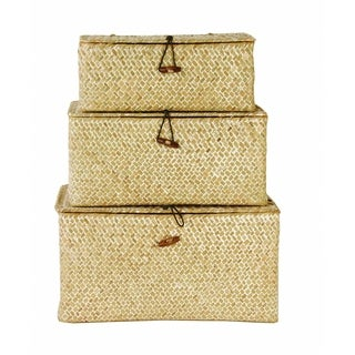 Seagrass Trunks (Set of 3)