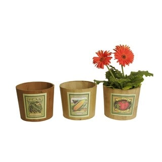 Wald Imports 7-inch Retro Veggie Pot Baskets (Set of 3)