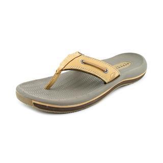 Sperry Top Sider Men's 'Santa Cruz' Leather Sandals (Size 7 )