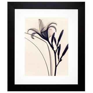 McMillan 'Daylily' Framed Artwork