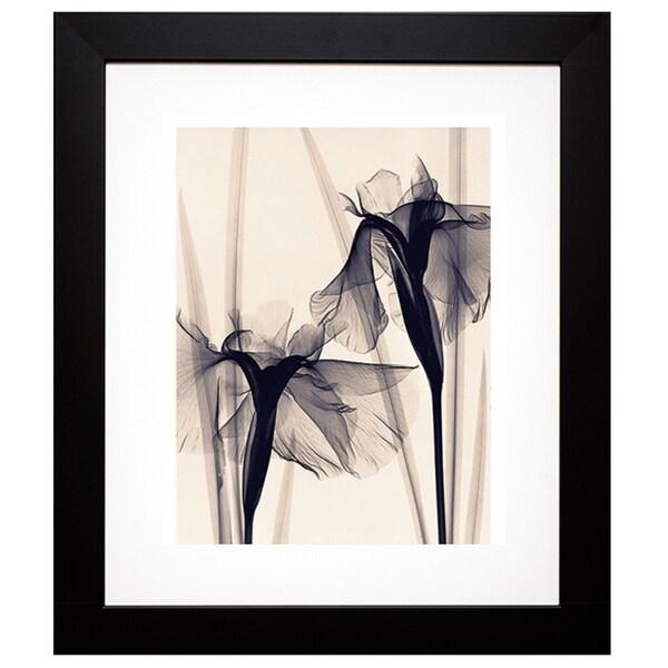 McMillan 'Japanese Iris' Framed Artwork - Black 13856582
