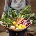 Produce Picks Fresh-picked Farmers Market Produce Box