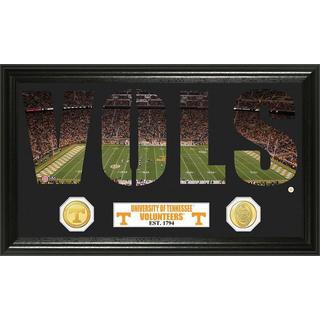 University of Tennessee Word Art Panoramic Photo Bronze Mint Coin