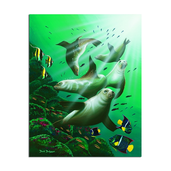 David Dunleavy 'Galapagos Sea Lions' Canvas Wall Art