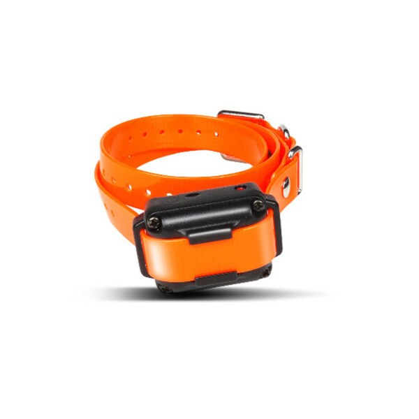 Dogtra iQ Plus Additional Receiver/ Collar