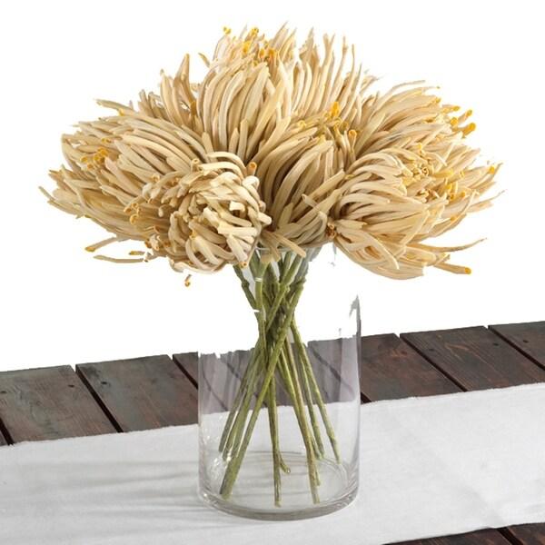 Exotic Protea Stem (Set of 12)