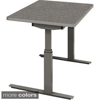 Maylie RGE 48-inch by 24-inch Electric Height-adjustable Table