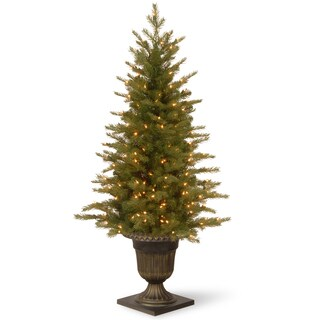 4-foot Nordic Spruce Entrance Tree with Clear Lights