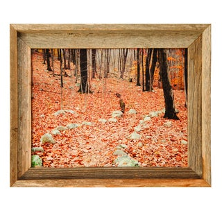 Barnwood Picture Frame (11 x 14)