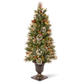 Wintry Pine 4-foot Entrance Tree with Clear Lights