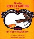 Another Field Guide to Little Known and Seldom Seen Birds of North America (Paperback)