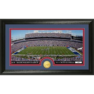 "NFL Buffalo Bills ""Stadium"" Bronze Coin Panoramic Photo Mint"