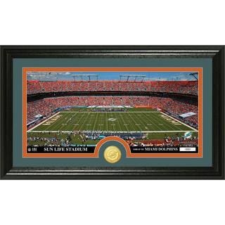 "NFL Miami Dolphins ""Stadium"" Bronze Coin Panoramic Photo Mint"