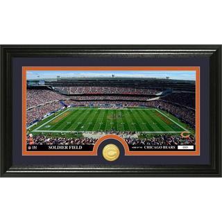 """NFL Chicago Bears """"Stadium"""" Bronze Coin Panoramic Photo Mint"""
