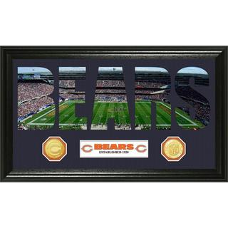 NFL Chicago Bears 'Word Art' Bronze Coin Panoramic Photo Mint