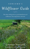 Newcomb's Wildflower Guide: An Ingenious New Key System for Quick, Positive Field Identification of the Wildflowe... (Paperback)