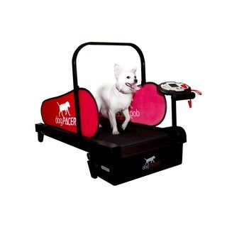 MiniPacer dogPACER Dog Treadmill