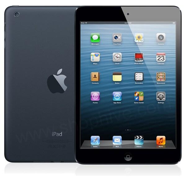Apple MD542LL/A 64GB Verizon 4G Black iPad Mini
