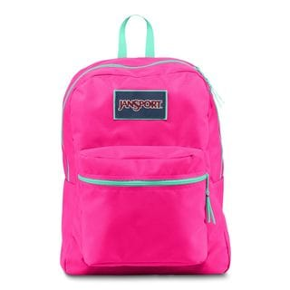 JanSport Overexposed Fluorescent Pink/ Mint to Be Green School Backpack