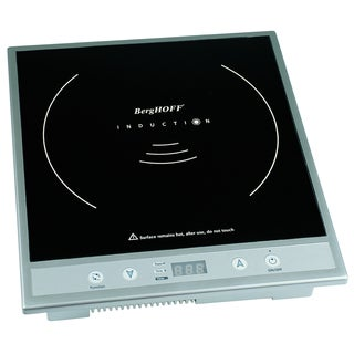 Silver Induction Stove
