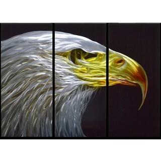 Eagle Eye' Large 3-panel Handmade Metal Wall Art