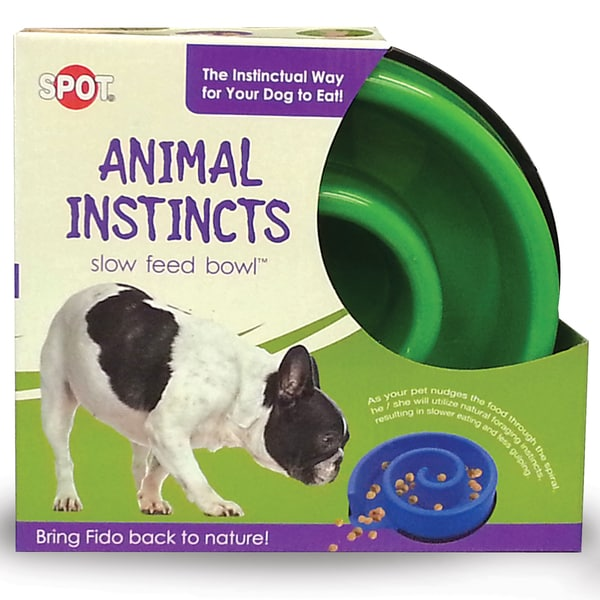 "Animal Instincts Slow Feed Bowl 10""-Green"