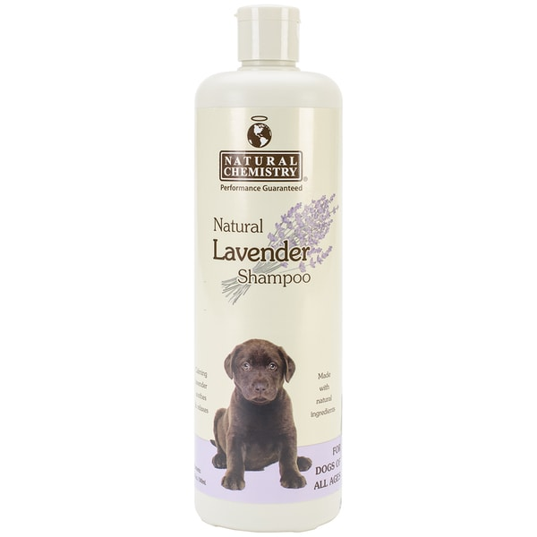 Natural Lavender Shampoo 16.9oz
