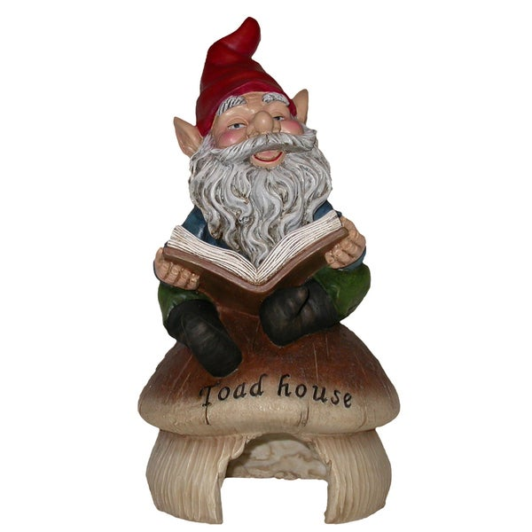 Gnome Reading Book on Toadhouse